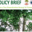 The Second National Policy Dialogue on Strengthening Forest